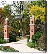 Memorial Park Autumn Acrylic Print