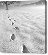 Memory Traces Of A Cold Day Acrylic Print