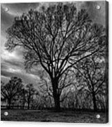 Memphis Winter On The Mississipi 001 Acrylic Print