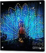 Memphis Zoo Lights Acrylic Print