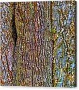 Menage A Tree Acrylic Print