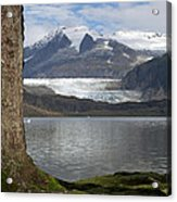 Mendenhall Glacier In Late Fall Acrylic Print