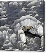 Mendenhall Lake Ice Abstract Acrylic Print