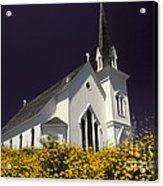 Mendocino Presbyterian Church Acrylic Print by Ron Sanford
