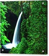 Menteko Falls  Acrylic Print
