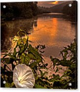 Meramec River At Chouteau Claim Acrylic Print