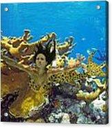 Mermaid Camoflauge Acrylic Print by Paula Porterfield-Izzo