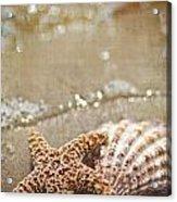 Mermaid Kisses And Starfish Wishes Acrylic Print