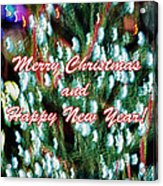 Merry Christmas 2 Acrylic Print by Skip Nall