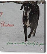 Merry Christmas Critters Hershey Acrylic Print