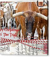 Merry Christmas From The Trail Acrylic Print