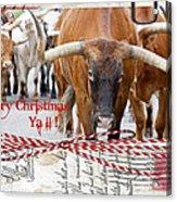 Longhorns Merry Christmas Ya'll Acrylic Print