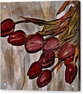 Mes Tulipes Acrylic Print