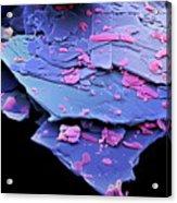 Mescaline Crystals Acrylic Print