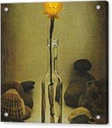 Message Of Love IIi Acrylic Print