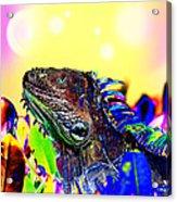 Metallic Dragon Acrylic Print