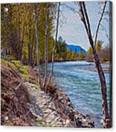 Methow River Coming From Mazama Acrylic Print by Omaste Witkowski