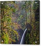 Metlako Falls Oregon Acrylic Print