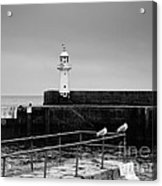Mevagissey Lighthouse Acrylic Print
