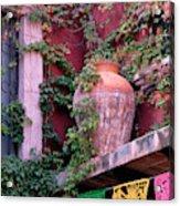 Mexico, San Miguel De Allende, Ivy Acrylic Print