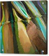 Michael Richard Rosenblatt Paints I Acrylic Print