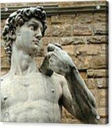 Michelangelo's David 1 Acrylic Print