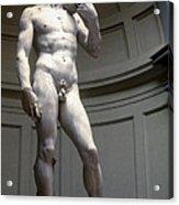 Michelangelo's David Acrylic Print