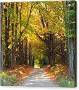 Michigan Back Roads Acrylic Print