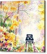 Michigan Backroads Acrylic Print