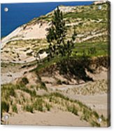 Michigan Sleeping Bear Dunes Acrylic Print