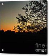 Michigan Sunrise 01 Acrylic Print