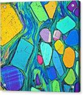 Art And Geology Acrylic Print