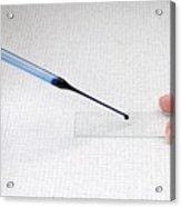 Microscope Slide Preparation Acrylic Print