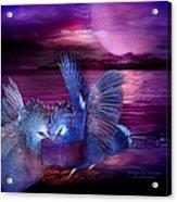 Midnight Blue Rendevous Acrylic Print