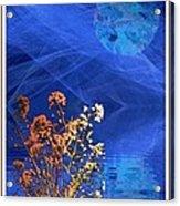 Midnight Flowers Acrylic Print