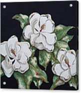 Midnight Magnolia Acrylic Print