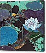 Midnight Moonglow Acrylic Print