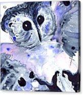 Midnight Owl Acrylic Print