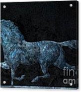 Midnight Run - Weathervane Acrylic Print