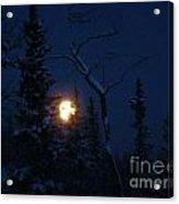 Midwinter Moonrise Acrylic Print