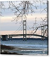 Mighty Mac Acrylic Print