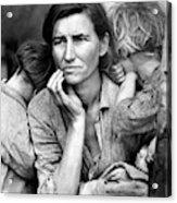 Migrant Mother, 1936 Acrylic Print
