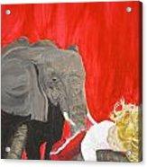 Mika And Elephant Acrylic Print