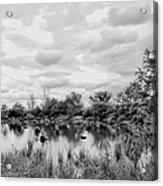 Mill Creek Marsh Serenity Acrylic Print