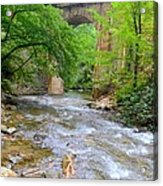 Mill Creek Viaduct Acrylic Print by Bob Jackson