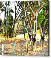 Miller Road Acrylic Print by Artist and Photographer Laura Wrede