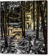 Millhouse In The Moonlight Acrylic Print