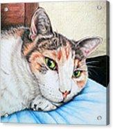 Mimi Acrylic Print
