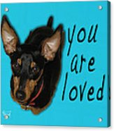 Min Pin You Are Loved Acrylic Print