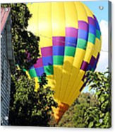 Mind If I Land In Your Backyard 2 Acrylic Print